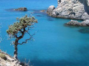 Cyclades gulet cruise