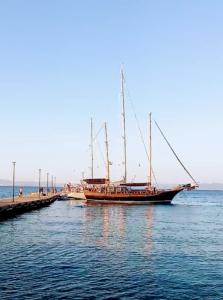 Odysseus gulet yacht photos-caicco Odysseus foto goletta odysseus