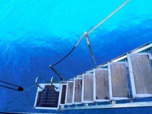 Odysseus gulet yacht photos-caicco Odysseus foto (29)