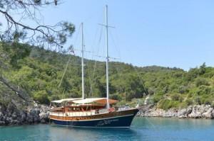 Elara gulet yacht  (6)