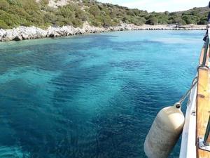 aquarium-bay-bodrum