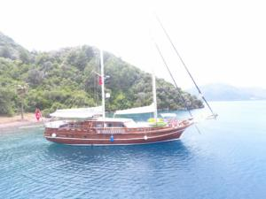 Yucebey guley yacht (12)